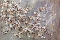 Blossom Melody Fine Art Print