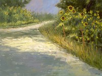 Springmill Lane Fine Art Print