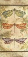 Classical Dragonfly Panel Fine Art Print