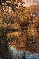 Clove Lakes Park in Autumn C Fine Art Print