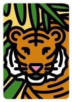 Tigre Fine Art Print