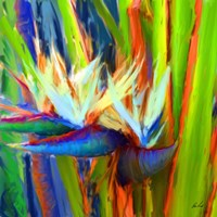 Bird of Paradise 2 Fine Art Print