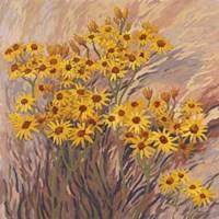 Scattered Seeds 2 Fine Art Print