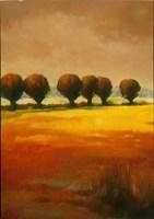 Pollard Willow I Fine Art Print