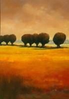 Pollard Willow II Fine Art Print