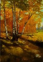 Woodland Stream I Fine Art Print