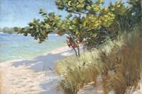 West Coast Seagrapes Fine Art Print