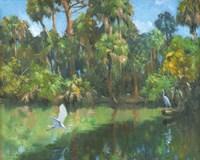 Egrets In Paradise Fine Art Print