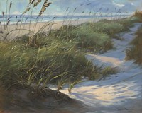 Glistening Sea Oats Fine Art Print