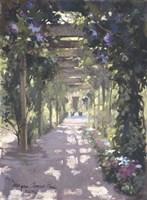 Pergola Violet Watercolor Fine Art Print