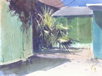 Sunny Palms Fine Art Print