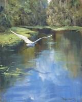 Buzzing The River Fine Art Print