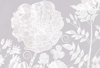 Field Poppy - White Fine Art Print