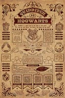 Harry Potter - Quidditch Info Wall Poster