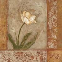 Morning Floral I Fine Art Print