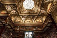 New York Library Fine Art Print