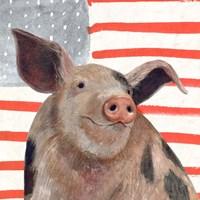 Patriotic Farm IV Fine Art Print