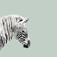 Pop Safari I Fine Art Print