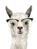 Hip Llama IV Fine Art Print