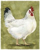 Chicken Scratch III Framed Print