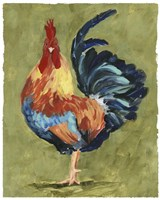 Chicken Scratch IV Framed Print