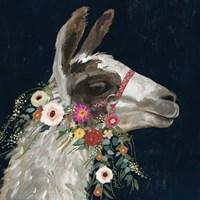 Lovely Llama I Fine Art Print