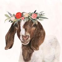 Garden Goat II Framed Print