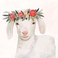 Garden Goat IV Framed Print