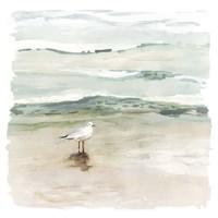 Seagull Cove I Fine Art Print