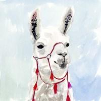 Watercolor Llama I Framed Print