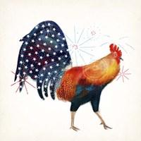 Rooster Fireworks II Fine Art Print