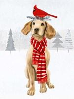 Christmas Cats & Dogs V Framed Print