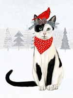 Christmas Cats & Dogs VI Fine Art Print