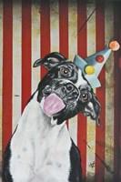 Party Dog I Fine Art Print