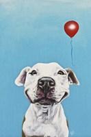 Party Dog V Fine Art Print