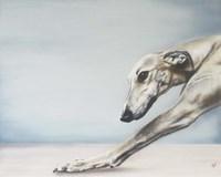 Down Dog Fine Art Print