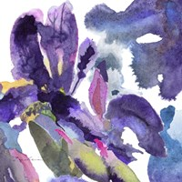 Watercolor Flower Composition II Fine Art Print