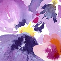 Watercolor Flower Composition IV Fine Art Print