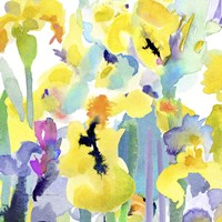 Watercolor Flower Composition VI Fine Art Print