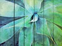 Creative succulent Fine Art Print