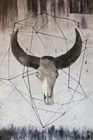 Buffalo Skull 2 Fine Art Print