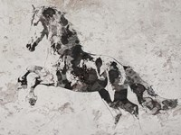 Running Wild Horse 3 Fine Art Print