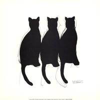 Katzenmusik Fine Art Print