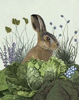 Cabbage Patch Rabbit 3 Fine Art Print