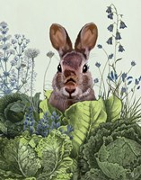 Cabbage Patch Rabbit 6 Fine Art Print