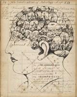 Phrenology Bookpage Fine Art Print