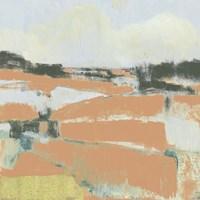 Coral Fields II Framed Print