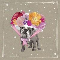 Fancypants Wacky Dogs IV Fine Art Print