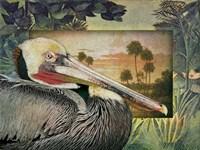 Pelican Paradise I Fine Art Print