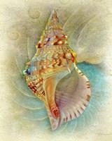 Aquatica I Fine Art Print